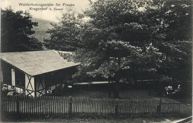 P118-1911